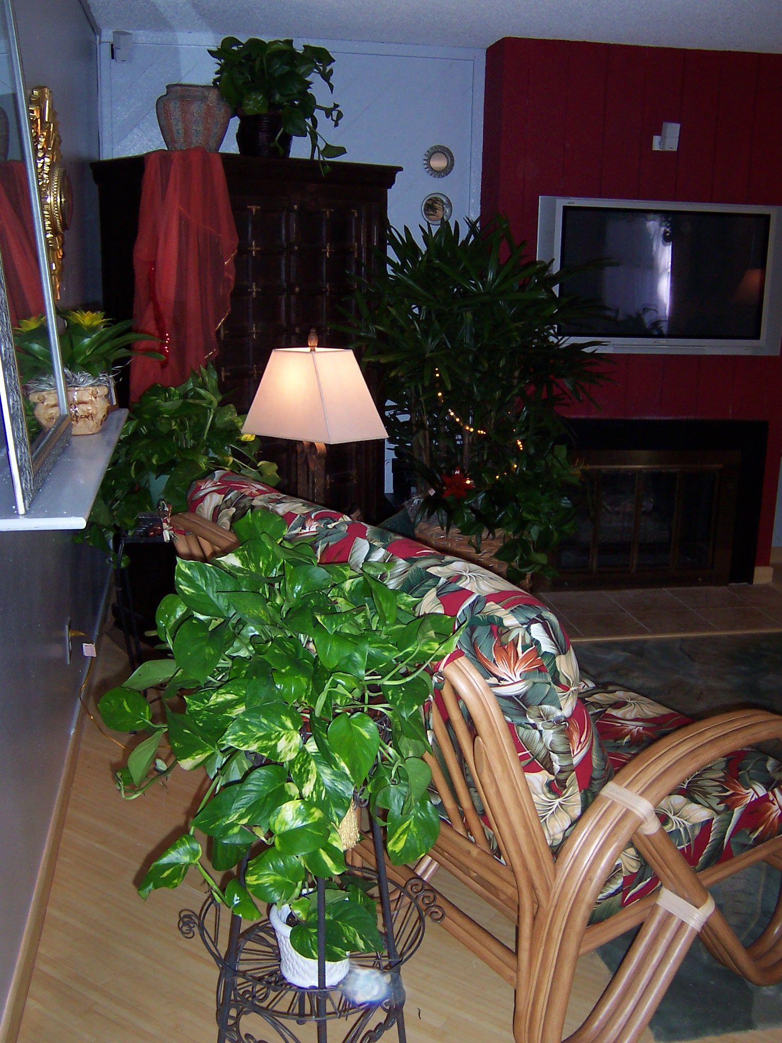 Living Room Plants - Residential Plant Service